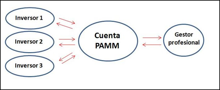 cuentas PAMM bolsaytrading