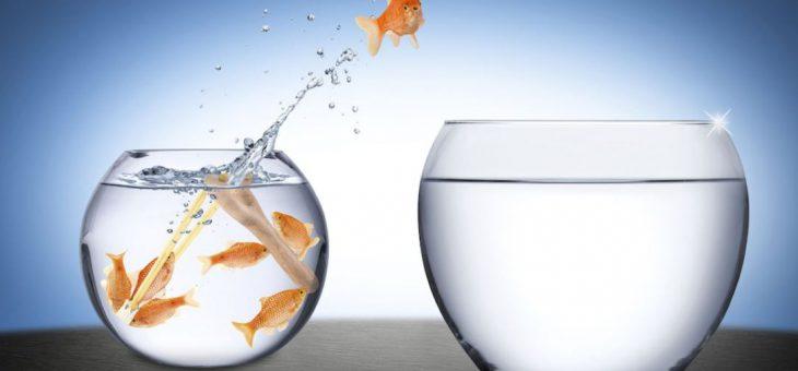 Cambiar para ganar en trading