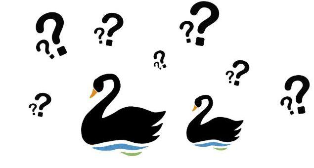 Cisne negro aplicado al trading.
